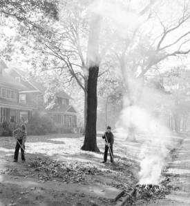 photo-chicago-boys-raking-and-burning-leaves-wilmette-street-1955
