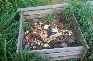 composting-how-to